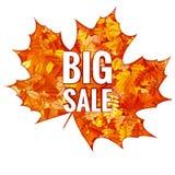 Hojas de Autumn Sales Banner With Colorful EPS 10 Fotografía de archivo libre de regalías