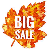 Hojas de Autumn Sales Banner With Colorful EPS 10 Fotos de archivo
