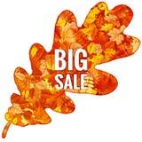 Hojas de Autumn Sales Banner With Colorful EPS 10 Fotografía de archivo