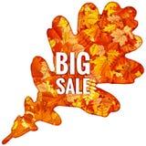 Hojas de Autumn Sales Banner With Colorful EPS 10 Imagenes de archivo