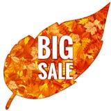 Hojas de Autumn Sales Banner With Colorful EPS 10 Foto de archivo