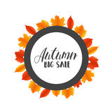 Hojas de Autumn Sales Banner With Colorful Vector Imagen de archivo