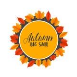 Hojas de Autumn Sales Banner With Colorful Vector Fotografía de archivo
