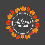 Hojas de Autumn Sales Banner With Colorful Vector Fotos de archivo libres de regalías