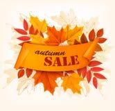 Hojas de Autumn Sales Card With Colorful Foto de archivo libre de regalías