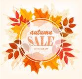 Hojas de Autumn Sales Card With Colorful Imagen de archivo