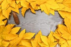 Hojas de Autumn Yellow Maple en el tablero de madera negro Foto de archivo libre de regalías