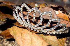 Hojas de imitación de Diamond Tiara On Bed Of Fallen Fotos de archivo