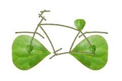 Hojas de la bici Fotos de archivo