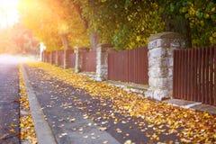 Hojas de la caída en el camino en Autumn Time Imagenes de archivo