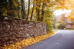 Hojas de la caída en el camino en Autumn Time Imagen de archivo libre de regalías