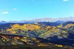Hojas de la caída en la montaña de COLORADO Fotos de archivo