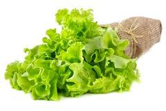 Hojas de la ensalada verde. Fotografía de archivo libre de regalías