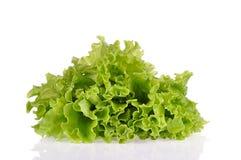 Hojas de la ensalada verde aisladas en un fondo blanco Imagenes de archivo
