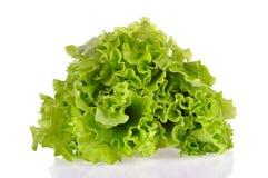 Hojas de la ensalada verde aisladas en un fondo blanco Foto de archivo