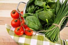 Hojas de la espinaca con los tomates y el tamiz Fotos de archivo