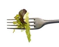 Hojas de la lechuga en fork Fotografía de archivo