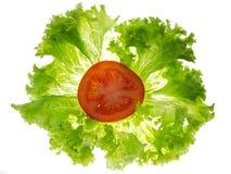 Hojas de la lechuga y rebanada del tomate Fotos de archivo