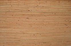 Hojas de la madera contrachapada Fotos de archivo