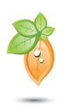Hojas de la naranja y del verde Foto de archivo