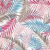 Hojas de la palmera Modelo inconsútil Hoja de palma en violeta en el fondo blanco Hojas tropicales de los árboles stock de ilustración