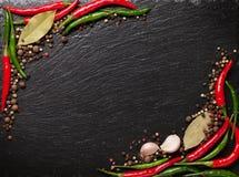 Hojas de la pimienta de chile, del grano de pimienta, del ajo y de la bahía Foto de archivo