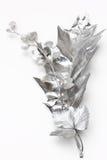 Hojas de la plata Imagen de archivo libre de regalías