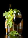 Hojas de la uva del vino y del vino-cojinete. Imagen de archivo
