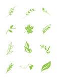 Hojas de los elementos de la insignia - vector ilustración del vector