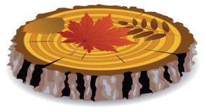 Hojas de madera del corte y de otoño Fotos de archivo libres de regalías