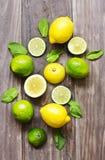 Hojas de menta fresca con la cal y el limón para preparar mojito Foto de archivo