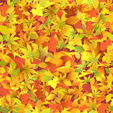 Hojas de otoño. ilustración del vector
