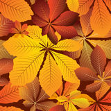 Hojas de otoño libre illustration
