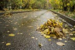 Hojas de otoño barridas al montón por los limpiadores al borde del r foto de archivo libre de regalías