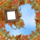 Hojas de otoño brillantes con el marco de madera Fotos de archivo