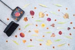Hojas de otoño, cepillo y recogedor de polvo en fondo concreto fotos de archivo