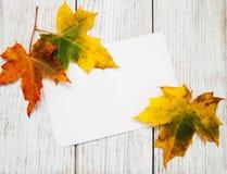 Hojas de otoño coloridas con la tarjeta Imágenes de archivo libres de regalías