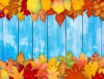 Hojas de otoño coloridas en fondo de madera Foto de archivo libre de regalías