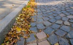 Hojas de otoño coloridas en la acera imagen de archivo