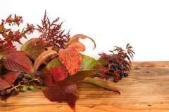 Hojas de otoño coloridas en una tabla de madera Foto de archivo
