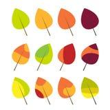 Hojas de otoño coloridas fijadas Foto de archivo