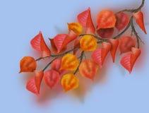 Hojas de otoño coloridas hermosas de la pintura de Digitaces en una rama contra un cielo azul Imagen de archivo