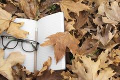 Hojas de otoño con el cuaderno y los vidrios imagen de archivo libre de regalías