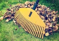 Hojas de otoño con el rastrillo Imagen de archivo libre de regalías