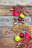 Hojas de otoño con la bellota, ramita, castaña sobre fondo de madera Imagenes de archivo