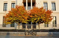 Hojas de otoño con la bici, en Berlín, Alemania Foto de archivo libre de regalías