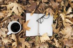 Hojas de otoño con la taza de café y de cuaderno fotos de archivo