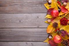 Hojas de otoño con las bayas y la fruta en un fondo gris imagen de archivo libre de regalías