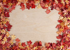 Hojas de otoño contra el fondo de madera Fotografía de archivo