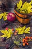 hojas de otoño de la Aún-vida Fotos de archivo